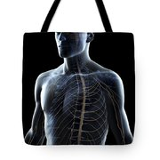 The Nerves Of The Upper Body Tote Bag