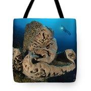 The Salvador Dali Sponge With Intricate Tote Bag
