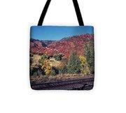 744 Sl Two Tracks Tote Bag
