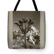 Joshua Tree National Park Landscape No 7 In Sepia Tote Bag