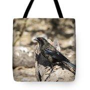 Bronzed Cowbird Tote Bag