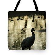 Common Cranes At Gallocanta Lagoon Tote Bag