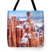 Eroded Rocks In A Canyon, Bryce Canyon Tote Bag