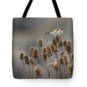 European Goldfinch Tote Bag