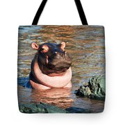 Hippopotamus In River. Serengeti. Tanzania Tote Bag