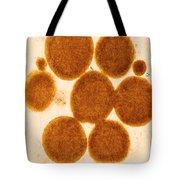 Lipid Droplets Tem Tote Bag