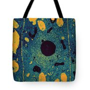 Onion Root Cell Tem Tote Bag