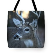8 Point Buck With Sunset Tote Bag