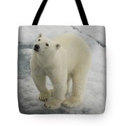 Polar Bear Crossing Ice Floe Tote Bag