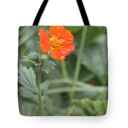 Scarlet Avens Orange Wild Flower Tote Bag