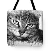 Tabby Tote Bag