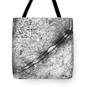 Tem Of Desmosomes Between Epithelial Tote Bag