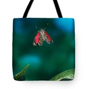 89 Butterfly In Flight Tote Bag
