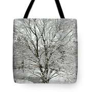 A Wintery View Along Conifer Drive In Burnt Hills Tote Bag