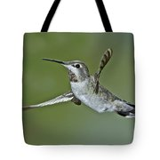 Annas Hummingbird Tote Bag