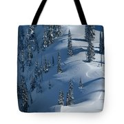 Backcountry Ski Traverse In Glacier Tote Bag