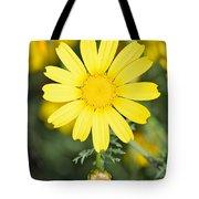 Daisy Tote Bag by George Atsametakis