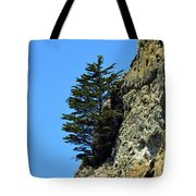 Devil's Slide Hike Tote Bag
