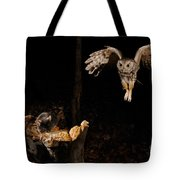 Eastern Screech Owl Tote Bag