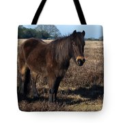New Forest Pony Tote Bag