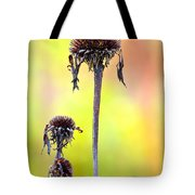 Wilted Flower  Tote Bag