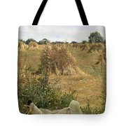 94 Degrees In The Shade, 1876 Tote Bag