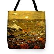 A Baby Dipper Tote Bag