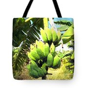 A Banana Field In Late Afternoon Sunlight With Sky And Clouds Tote Bag