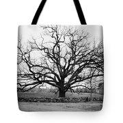 A Bare Oak Tree Tote Bag