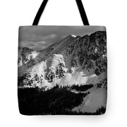 A Basin In Black And White Tote Bag