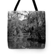 A Bayou Scene In Louisiana Tote Bag