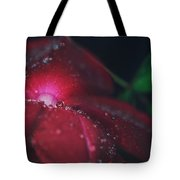 A Beacon Of Light Tote Bag by Laurie Search