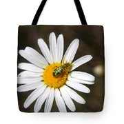 A Beattle On A Daisy Tote Bag