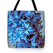 A Beauty In Blue Tote Bag by Hannes Cmarits
