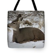 A Bed Of Snow Tote Bag