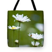 A Bee's World Tote Bag
