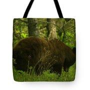 A Big Bruin Tote Bag