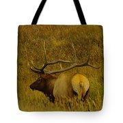 A Big Bull Elk Tote Bag