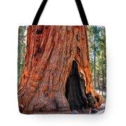 A Big Tree Tote Bag