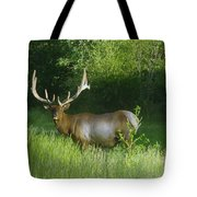 A Big Wide Rack  Tote Bag