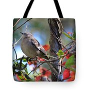 A Bird Enjoying The View Tote Bag