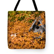 A Bird House Sits Empty In Fall Tote Bag