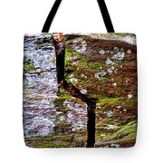 A Bit Cracked Tote Bag