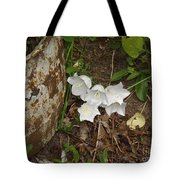 A Bloom In Time Tote Bag