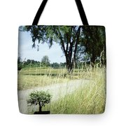 A Bonsai Tree In A Hayfield Tote Bag