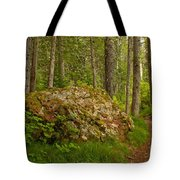 A Boulder In The Rainforest Tote Bag
