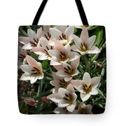 A Bouquet Of Miniature Tulips Celebrating The Spring Season - Vertical Tote Bag