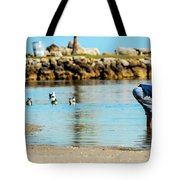 A Boy Searches The Water At Matheson Tote Bag