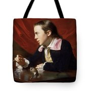 A Boy With A Flying Squirrel. Henry Pelham Tote Bag