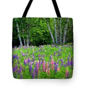 A Breathless Moment Among Lupine Tote Bag